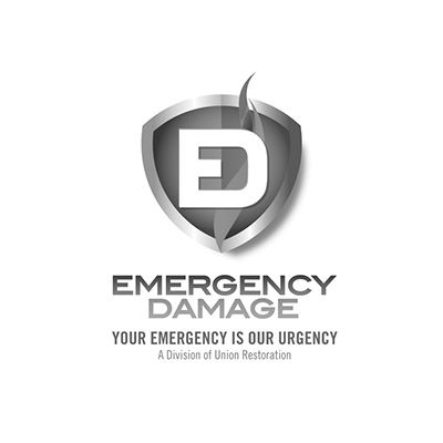 SEO Miami Client Emergency Damage