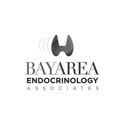 SEO Miami Client Bay Area Endocrinology Associates